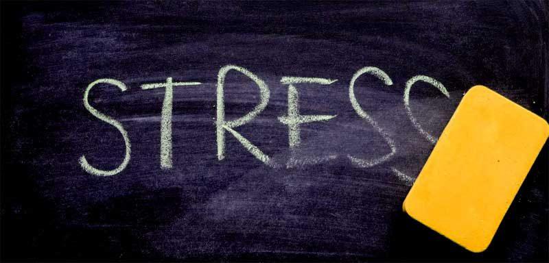 Как да се справим със стреса - съветите на Жени Желева